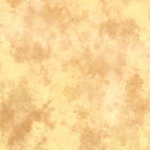 Lastolite EZYCARE KNITTED 3x3.5m ARIZONA - LASTOLB7554 (tekstilno ozadje)
